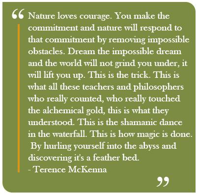 mckenna-quote